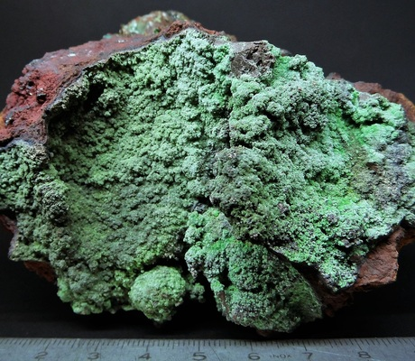 "<a href=""/photo-857290.html""><h1>Conichalcite</h1><h2>Ojuela Mine, Mapimí, Mun. de Mapimí, Durango, Mexico</h2><p>Bought at an exhibition of sales-purchases-exchange of minerals and fossils.</p><p class=""clickhere"">Click here to view photo page on mindat.org</p></a>"
